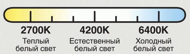 78640e869362.jpg