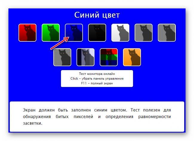 Stranitsa-s-siney-podlozhkoy-v-onlayn-servise-CatLair.png