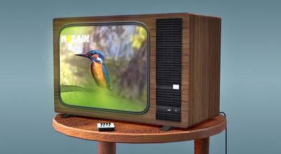 kak-rabotaet-televizor.jpg