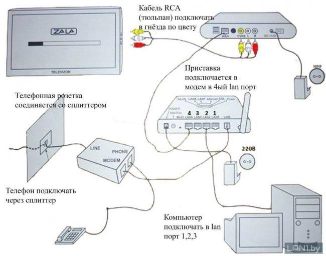 mz-1024x806.jpg