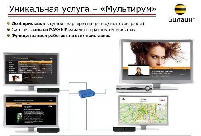 Multirum.jpg